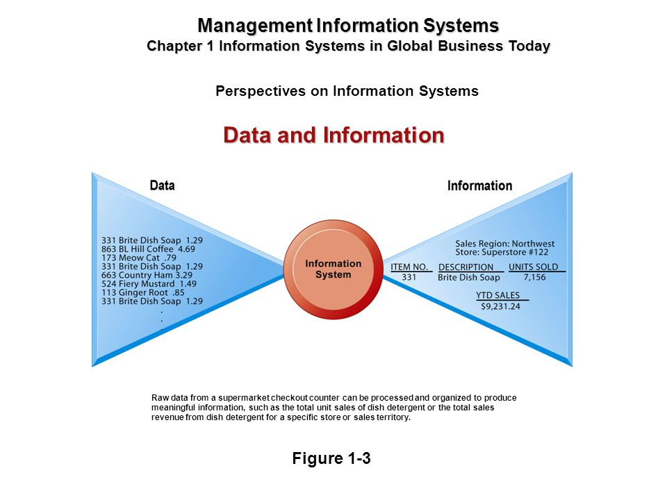 Perspectives on Information Systems Management Information Systems Chapter 1 Information Systems in Global Business Today Raw data from a supermarket