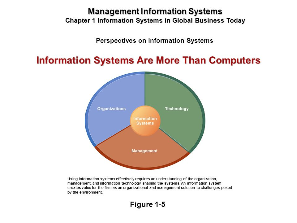 Perspectives on Information Systems Management Information Systems Chapter 1 Information Systems in Global Business Today Using information systems ef