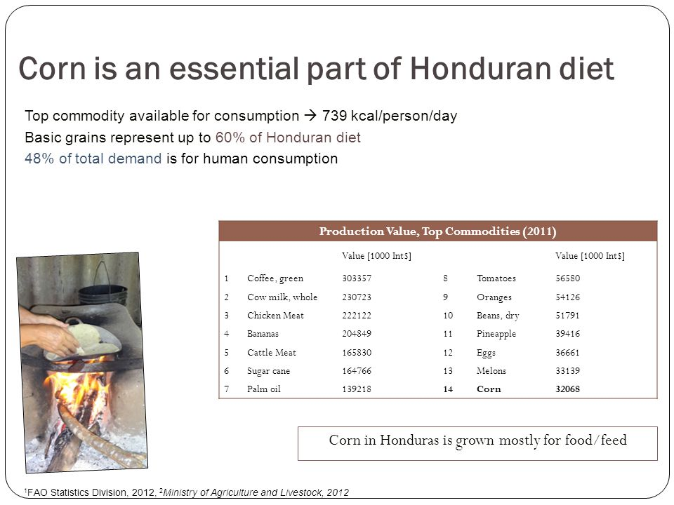 The 2013 (second) survey to observe experiences of conventional & GM corn farmers Economic, social and agronomic impacts We chose a representative sample of corn farmers from the main corn producing state in Honduras