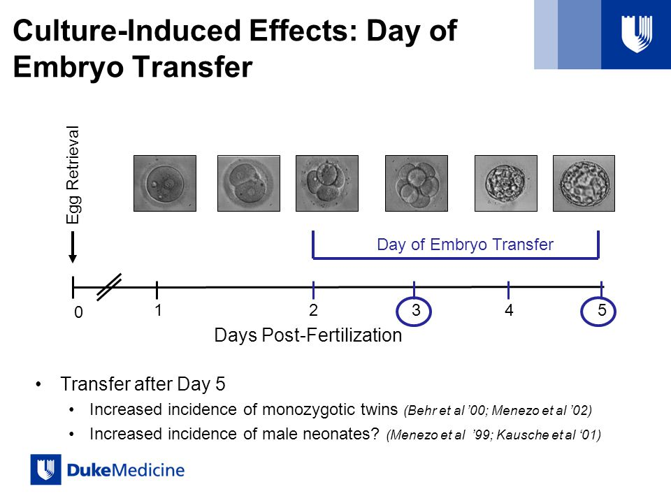 Culture-Induced Effects: Day of Embryo Transfer Transfer after Day 5 Increased incidence of monozygotic twins (Behr et al 00; Menezo et al 02) Increased incidence of male neonates.