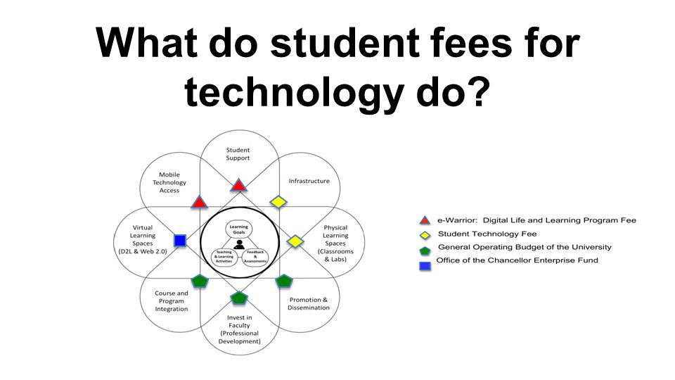 What do student fees for technology do