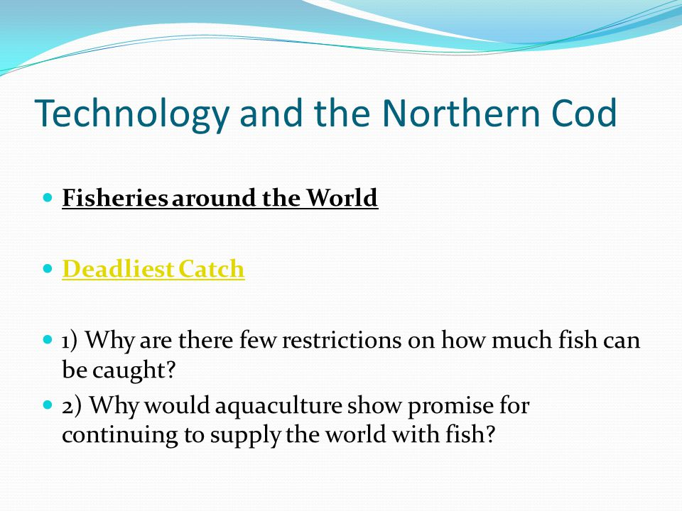 Technology and the Northern Cod Fisheries around the World Deadliest Catch 1) Why are there few restrictions on how much fish can be caught.