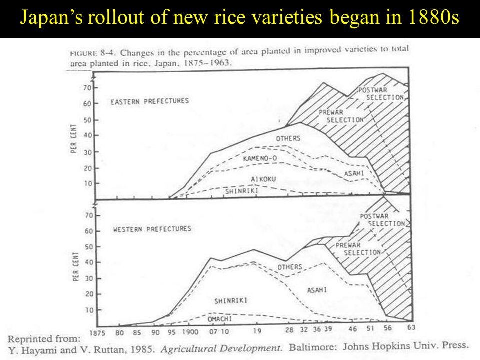 Slide 25 Japans rollout of new rice varieties began in 1880s