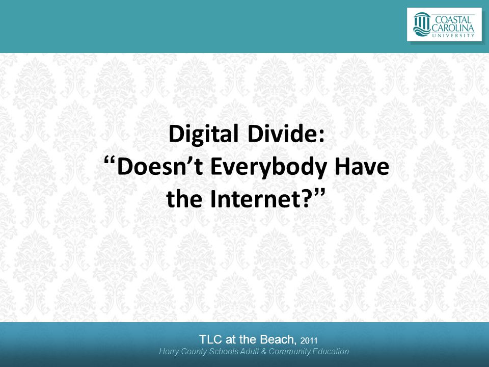 TLC at the Beach, 2011 Horry County Schools Adult & Community Education Digital Divide:Doesnt Everybody Have the Internet?