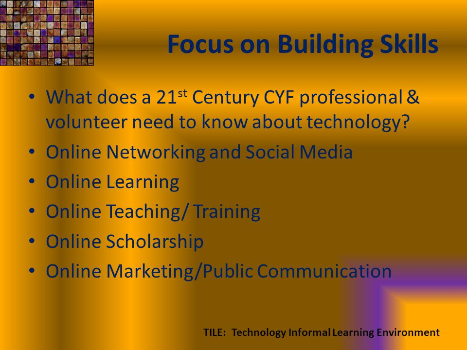 Focus on Building Skills What does a 21 st Century CYF professional & volunteer need to know about technology.
