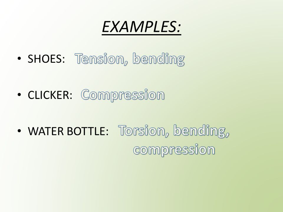 EXAMPLES: SHOES: CLICKER: WATER BOTTLE: