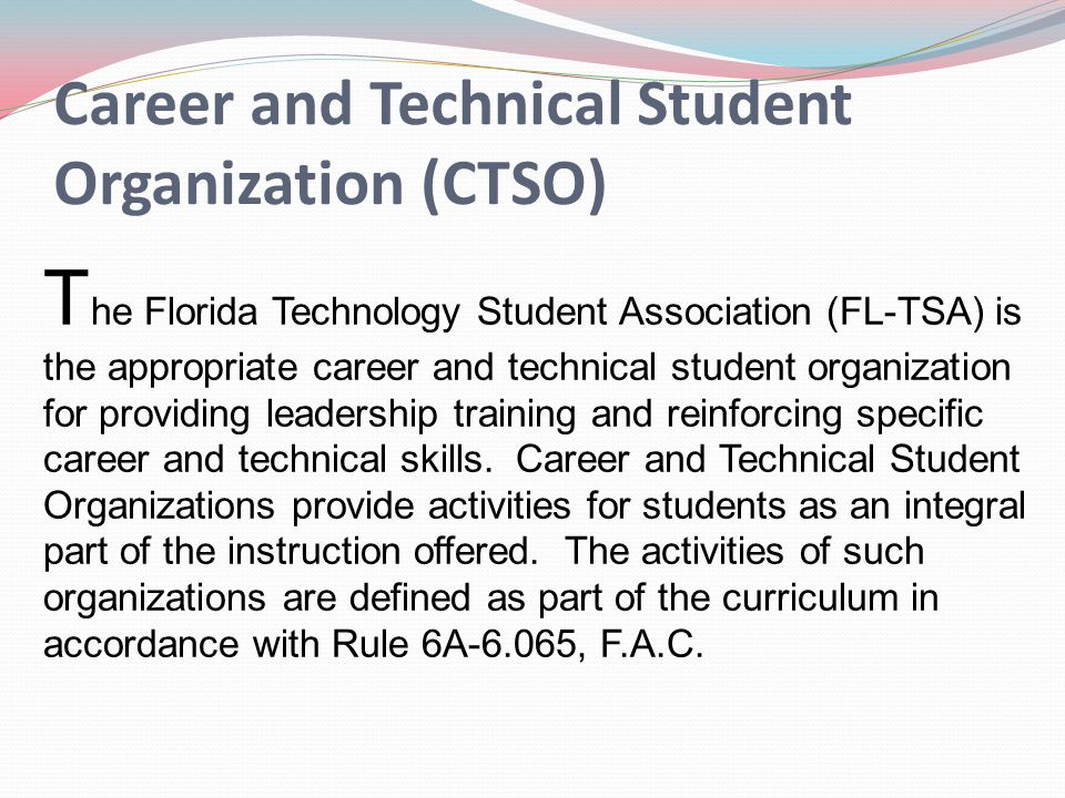 Career and Technical Student Organization (CTSO) T he Florida Technology Student Association (FL-TSA) is the appropriate career and technical student