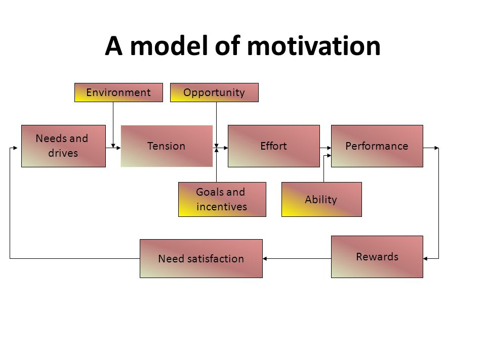 A model of motivation Needs and drives TensionEffortPerformance Rewards Need satisfaction EnvironmentOpportunity Goals and incentives Ability
