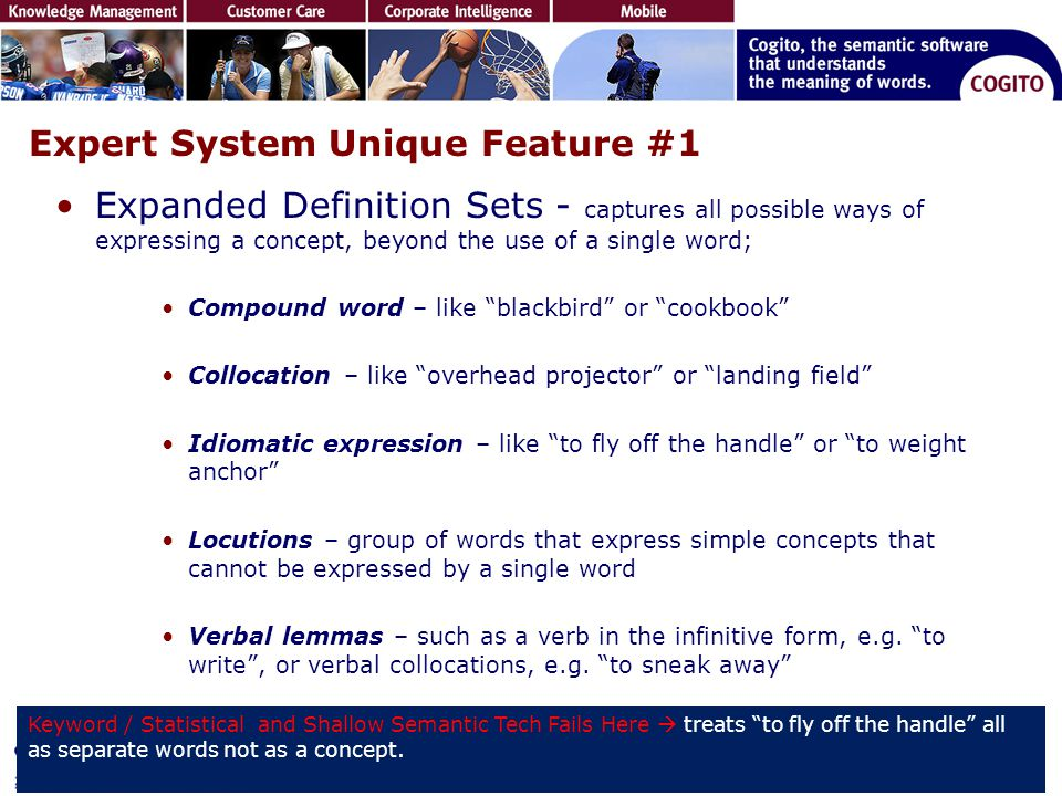 Expert System Unique Feature #1 Expanded Definition Sets - captures all possible ways of expressing a concept, beyond the use of a single word; Compou