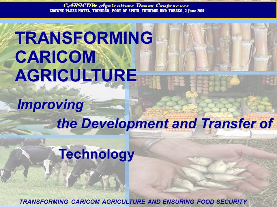 TRANSFORMINGCARICOMAGRICULTURE CARICOM Agriculture Donor Conference CROWNE PLAZA HOTEL, TRINIDAD, PORT OF SPAIN, TRINIDAD AND TOBAGO, 2 June 2007 CARICOM Agriculture Donor Conference CROWNE PLAZA HOTEL, TRINIDAD, PORT OF SPAIN, TRINIDAD AND TOBAGO, 2 June 2007 Improving the Development and Transfer of Technology TRANSFORMING CARICOM AGRICULTURE AND ENSURING FOOD SECURITY