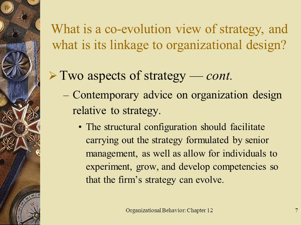Organizational Behavior: Chapter 127 What is a co-evolution view of strategy, and what is its linkage to organizational design.