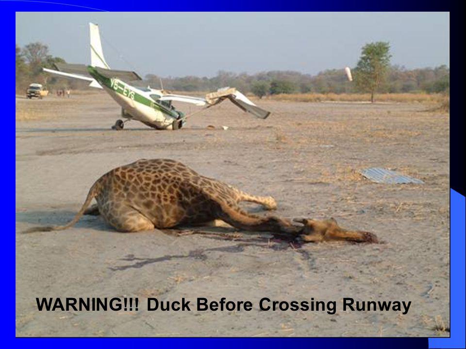 WARNING!!! Duck Before Crossing Runway