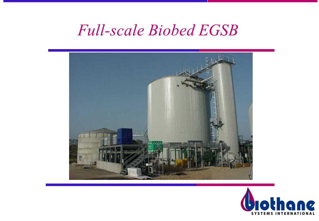 Full-scale Biobed EGSB