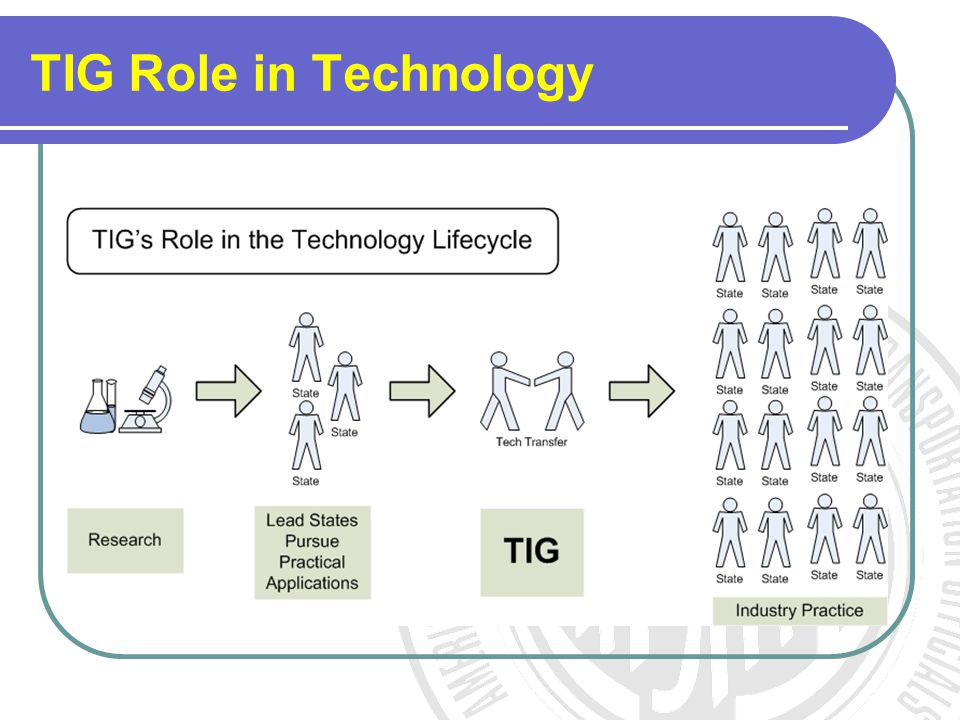 TIG Role in Technology