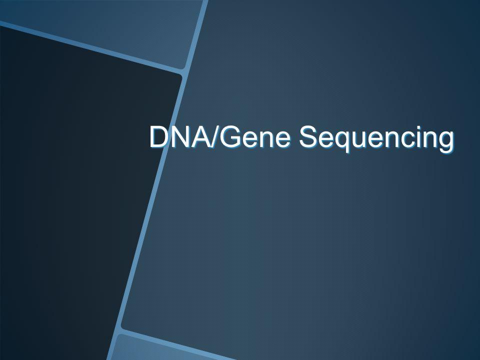 DNA/Gene Sequencing