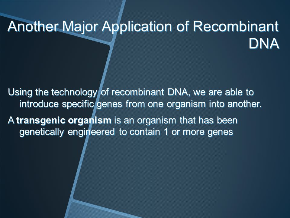 Another Major Application of Recombinant DNA Using the technology of recombinant DNA, we are able to introduce specific genes from one organism into a