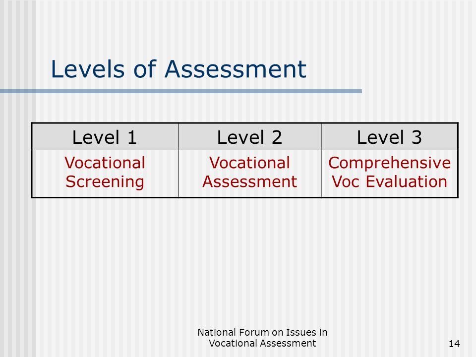 National Forum on Issues in Vocational Assessment14 Levels of Assessment Level 1Level 2Level 3 Vocational Screening Vocational Assessment Comprehensive Voc Evaluation
