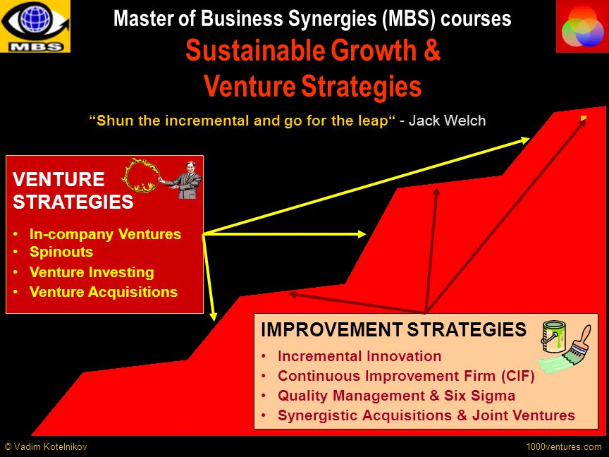 VENTURE STRATEGIES In-company Ventures Spinouts Venture Investing Venture Acquisitions IMPROVEMENT STRATEGIES Incremental Innovation Continuous Improv