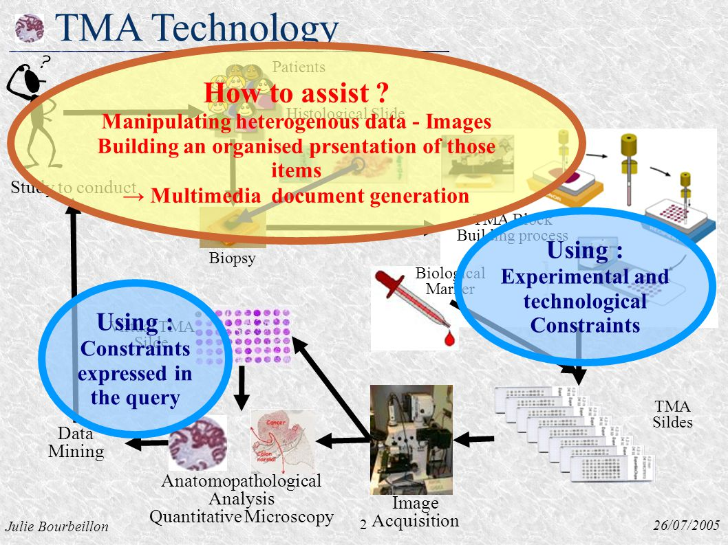 Julie Bourbeillon 26/07/2005 TMA Technology Histological Slide Biopsy 2 Study to conduct Virtual TMA Silde Data Mining Image Acquisition Biological Marker TMA Sildes Patients TMA Block Building process Anatomopathological Analysis Quantitative Microscopy Using : Constraints expressed in the query Using : Experimental and technological Constraints How to assist .