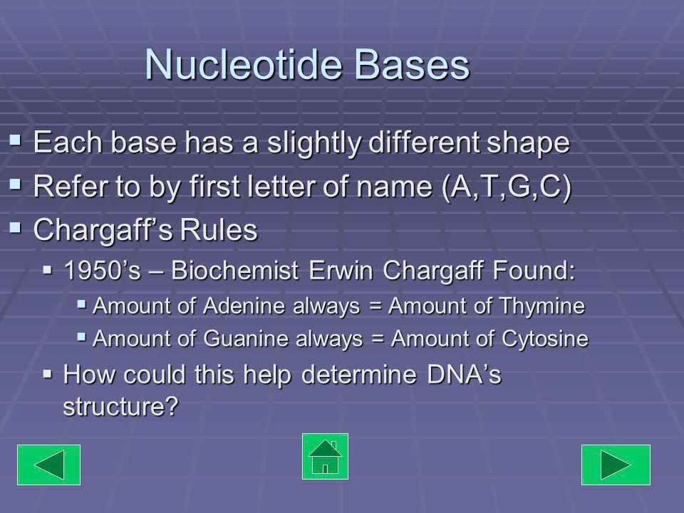 Exceptions to Mendels Rules Many genes can influence 1 trait Many genes can influence 1 trait Ex.