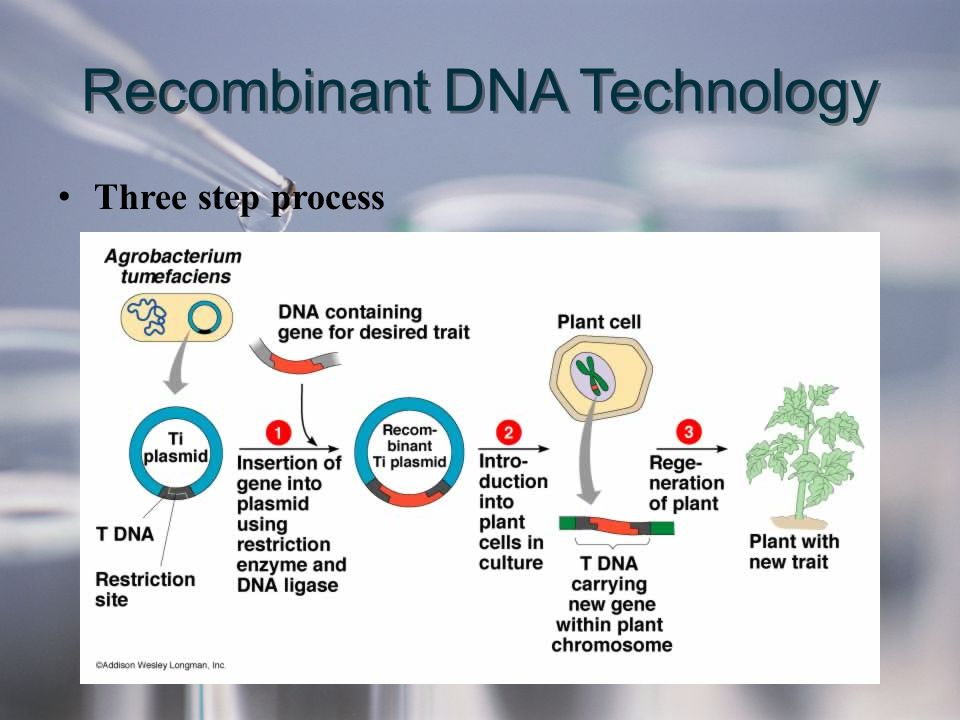 Recombinant DNA Technology Three step process
