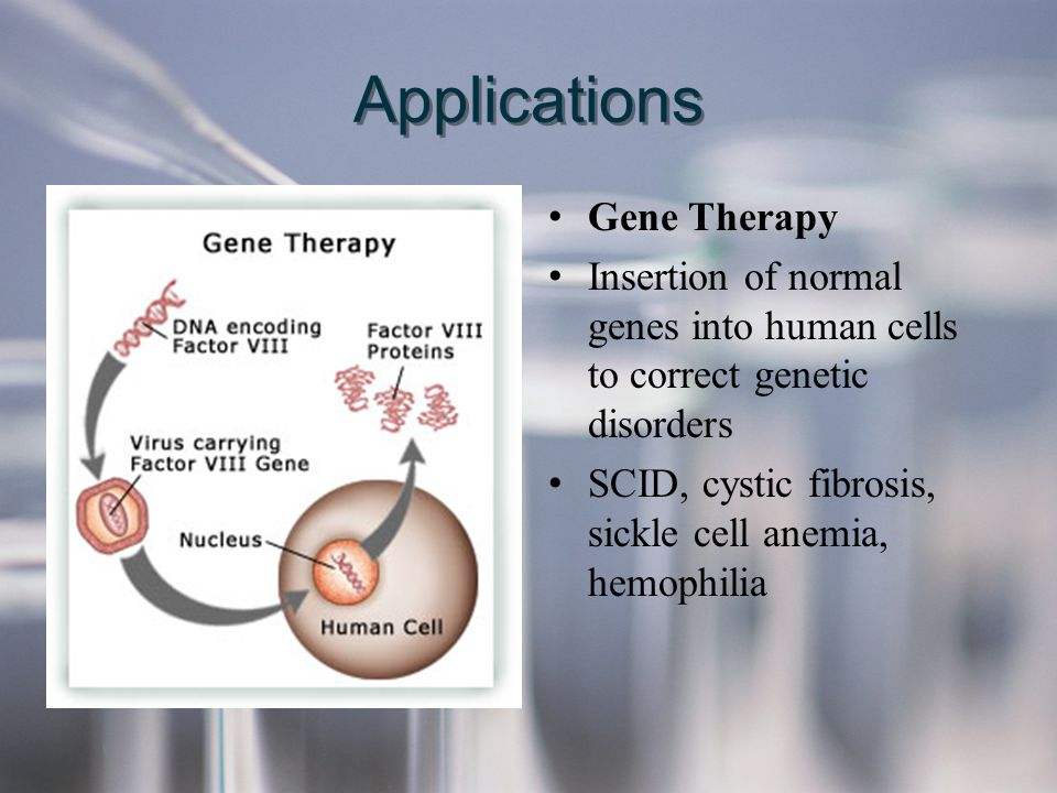 Applications Gene Therapy Insertion of normal genes into human cells to correct genetic disorders SCID, cystic fibrosis, sickle cell anemia, hemophili