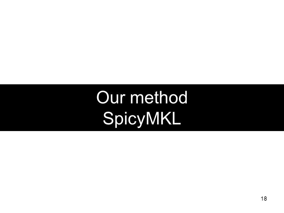 Our method SpicyMKL 18