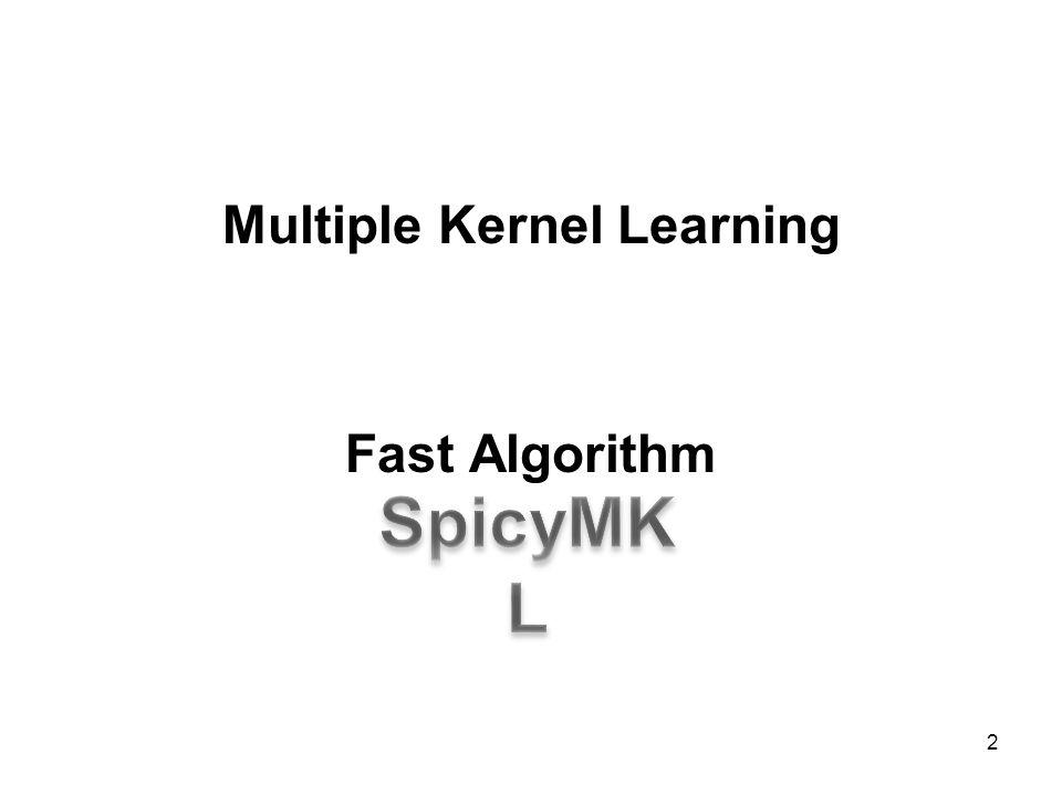 Multiple Kernel Learning Fast Algorithm 2