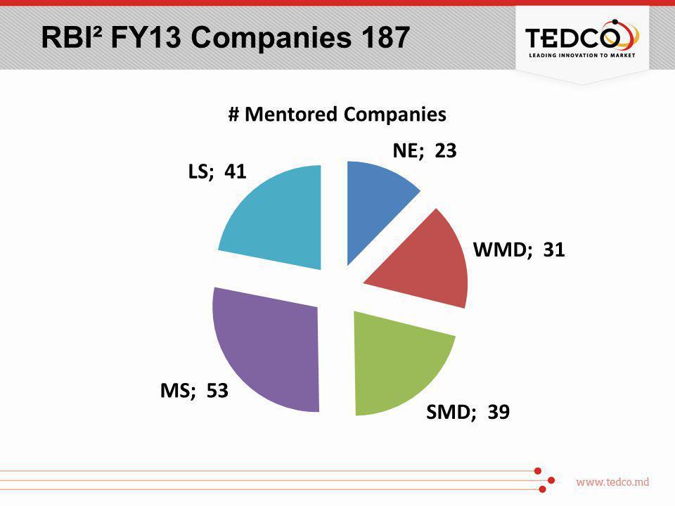 RBI² FY13 Companies 187