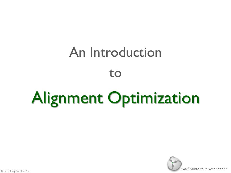 © SchellingPoint 2012 Alignment Optimization (AO) methods and software are used by leaders at organizations of all types and size, to increase the Quality, Execution, and Efficiency of collaborative actions, such as strategy, policy, projects, and business relationships, as the alternative to doing it themselves or with non-technology enabled consultants.