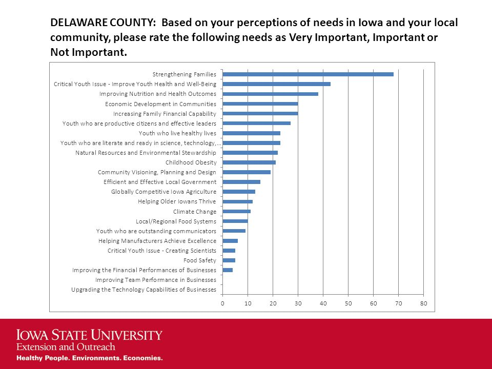 DELAWARE COUNTY: Based on your perceptions of needs in Iowa and your local community, please rate the following needs as Very Important, Important or Not Important.