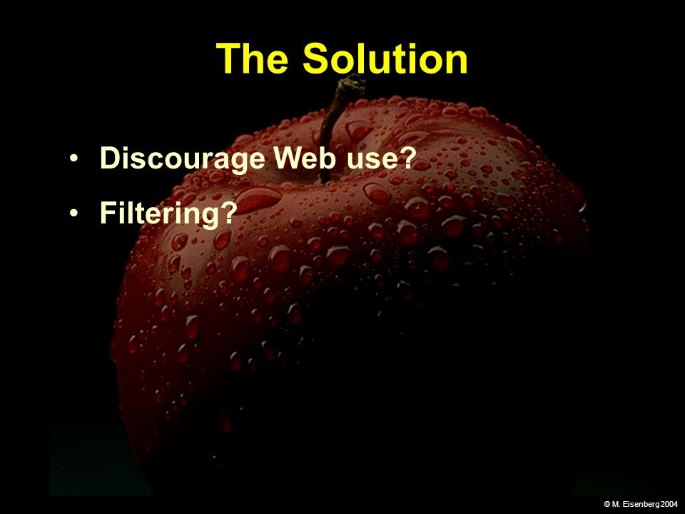 © M. Eisenberg 2004 The Solution Discourage Web use Filtering