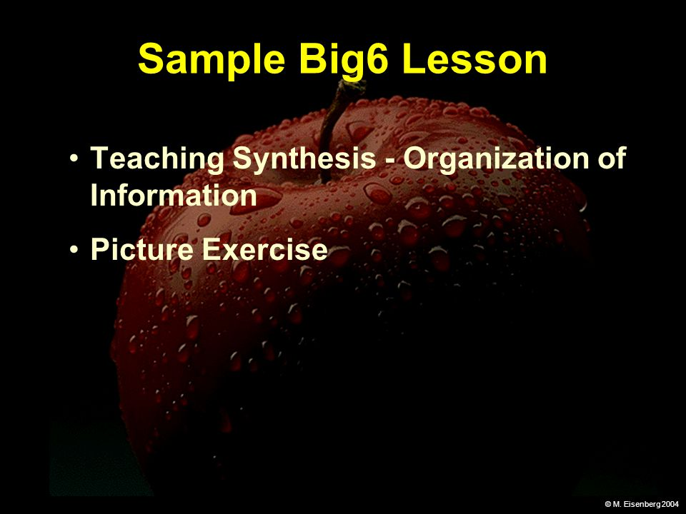 © M. Eisenberg 2004 Sample Big6 Lesson Teaching Synthesis - Organization of Information Picture Exercise