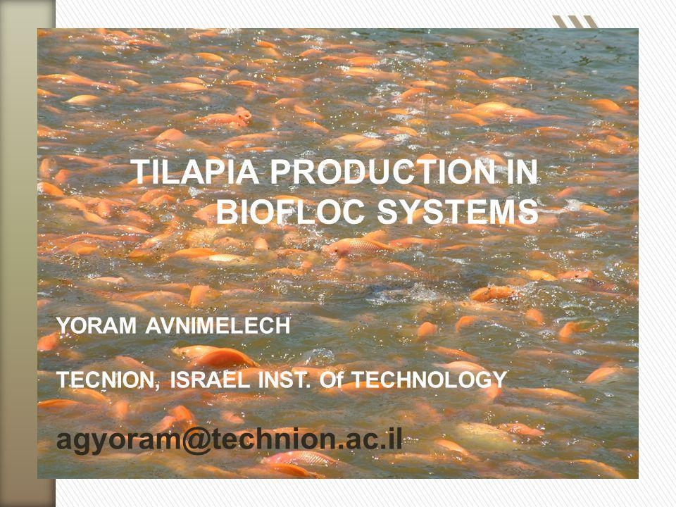 TILAPIA PRODUCTION IN BIOFLOC SYSTEMS YORAM AVNIMELECH TECNION, ISRAEL INST. Of TECHNOLOGY agyoram@technion.ac.il
