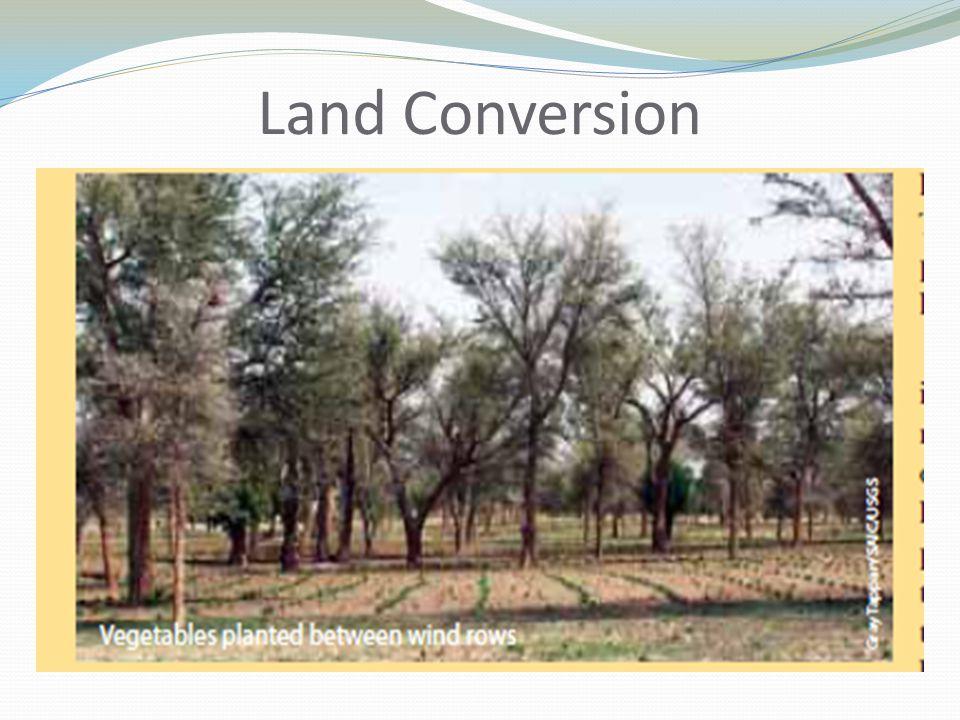 Land Conversion