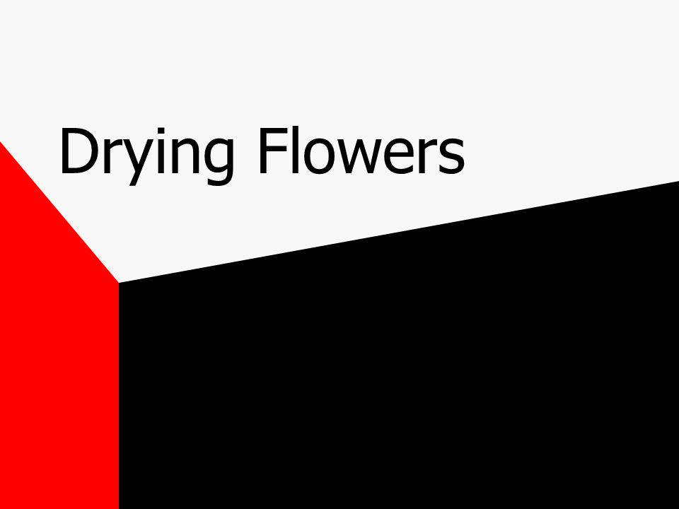 support medium should provide even drying throughout the flower and keep petals from curling