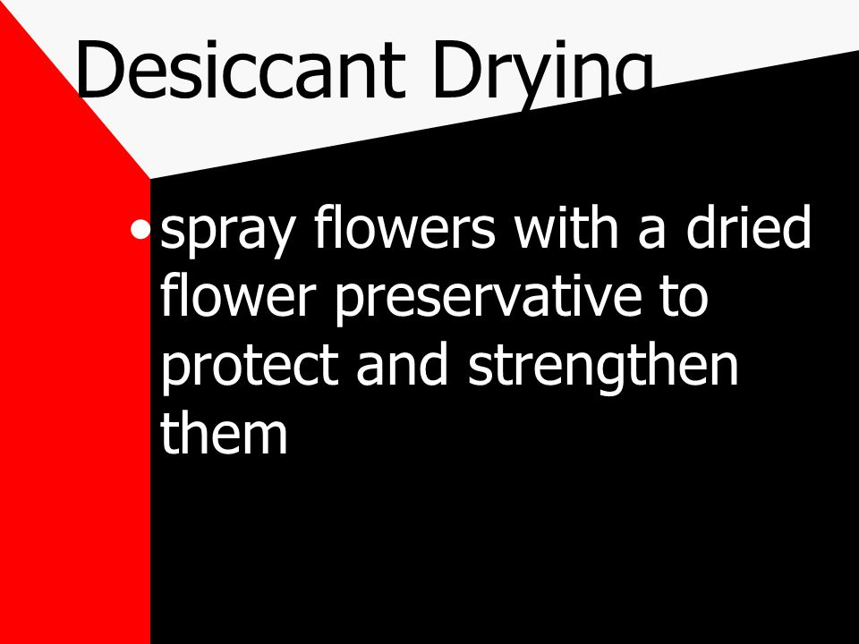 use a small paintbrush flowers dries with a desiccant are extremely fragile