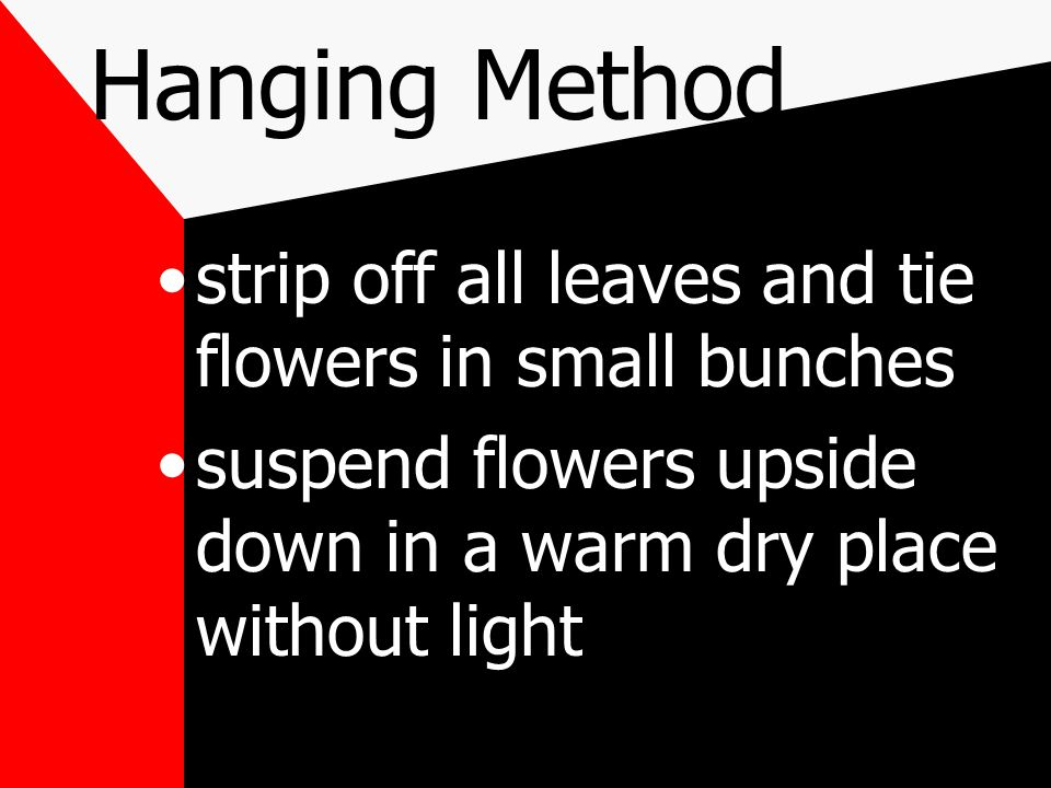 strip off all leaves and tie flowers in small bunches suspend flowers upside down in a warm dry place without light