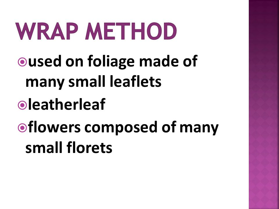 used on foliage made of many small leaflets leatherleaf flowers composed of many small florets
