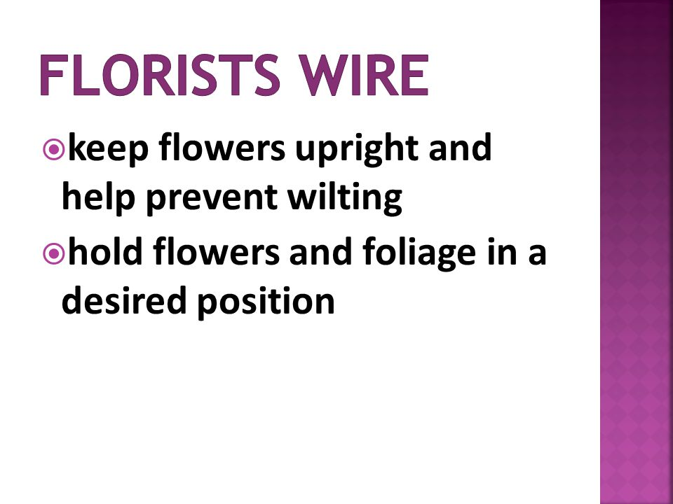 keep flowers upright and help prevent wilting hold flowers and foliage in a desired position