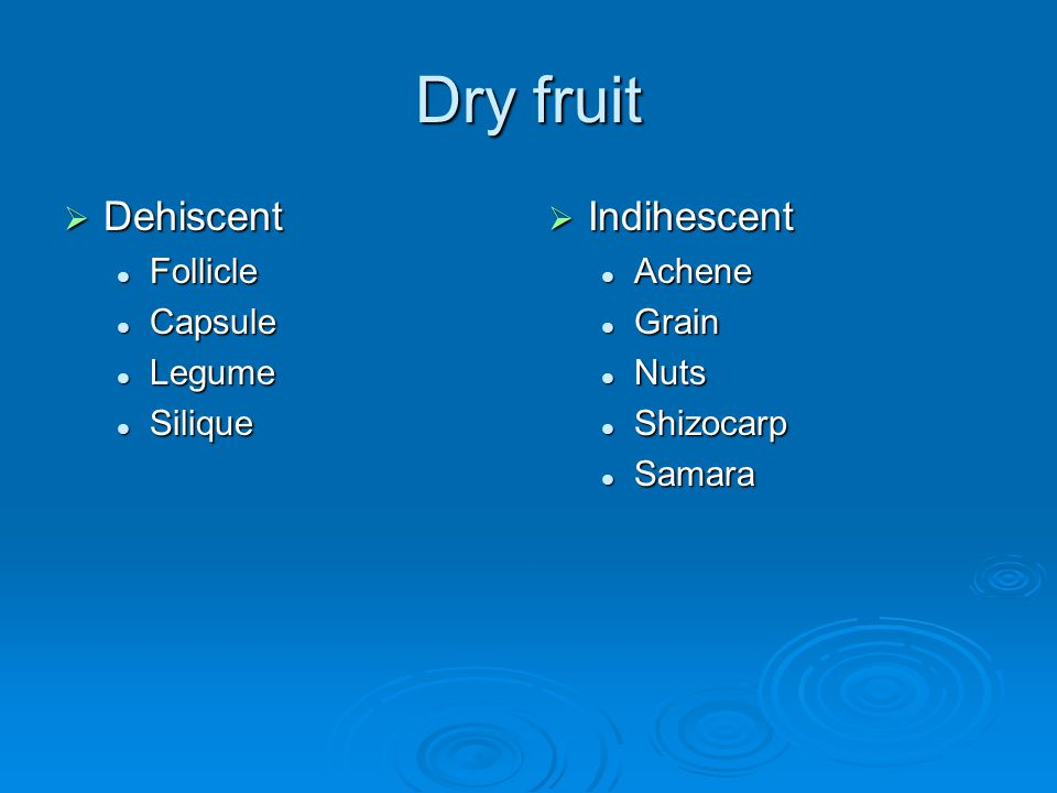Dry fruit Dehiscent Dehiscent Follicle Follicle Capsule Capsule Legume Legume Silique Silique Indihescent Indihescent Achene Grain Nuts Shizocarp Sama