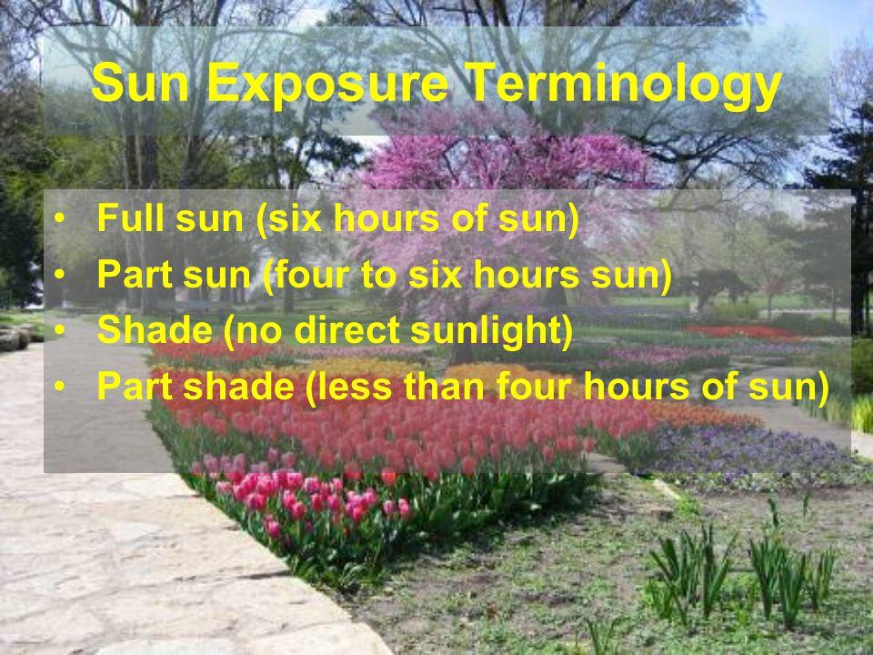 Sun Exposure Terminology Full sun (six hours of sun) Part sun (four to six hours sun) Shade (no direct sunlight) Part shade (less than four hours of s