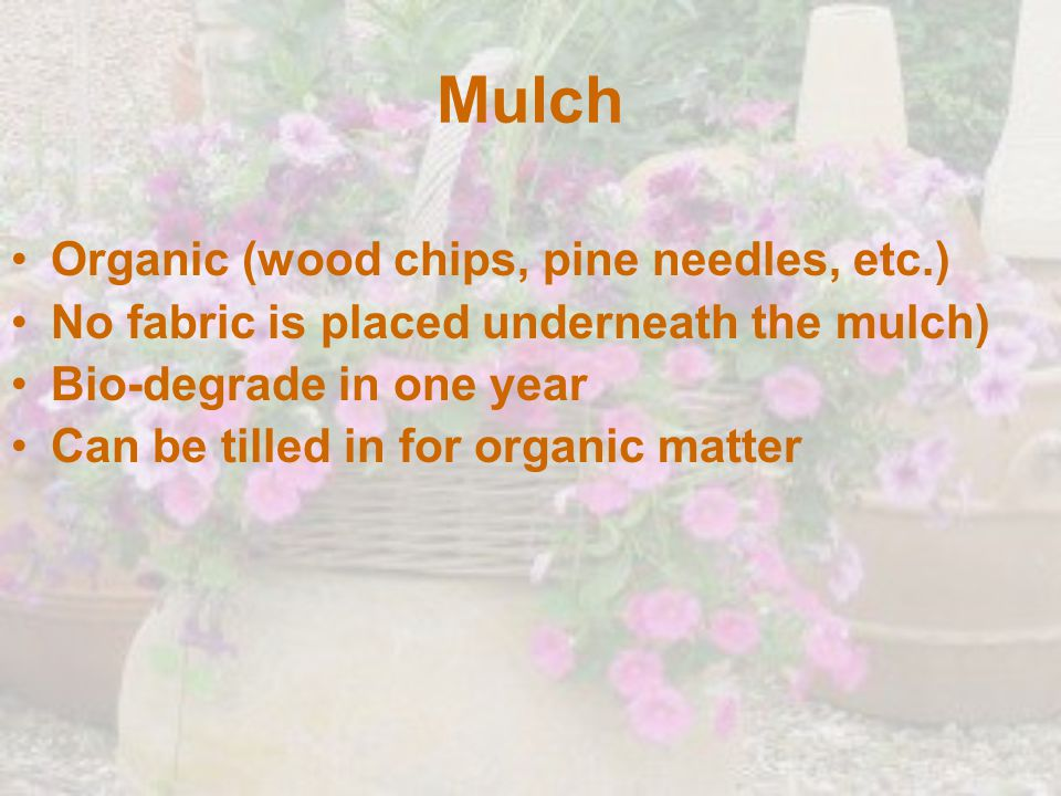 Mulch Organic (wood chips, pine needles, etc.) No fabric is placed underneath the mulch) Bio-degrade in one year Can be tilled in for organic matter