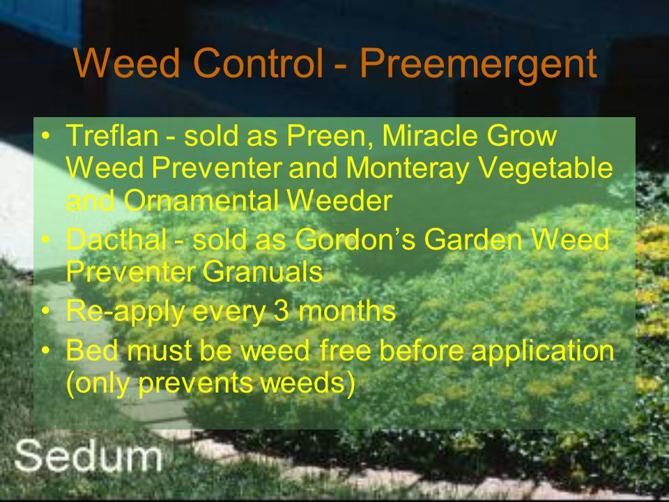 Weed Control - Preemergent Treflan - sold as Preen, Miracle Grow Weed Preventer and Monteray Vegetable and Ornamental Weeder Dacthal - sold as Gordons