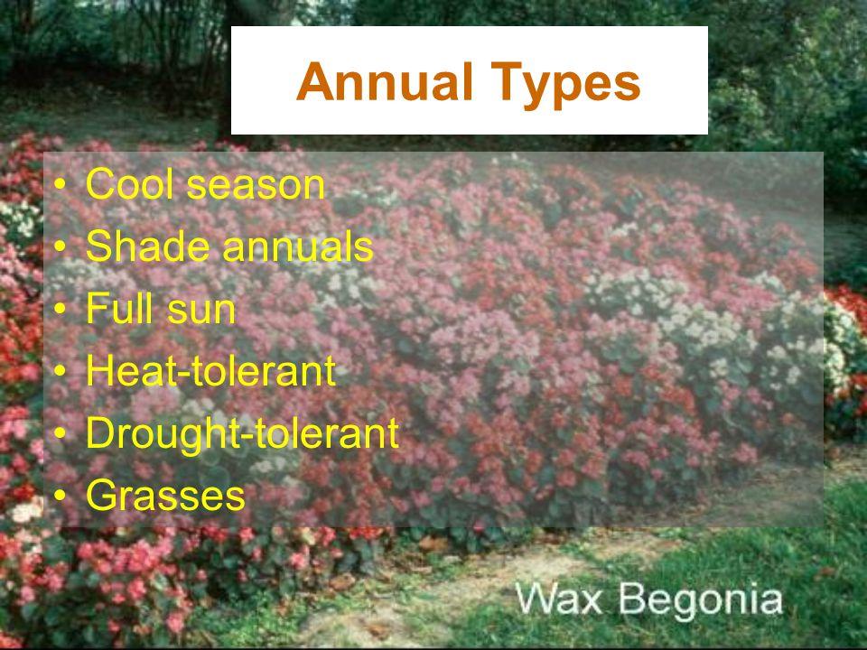 Annual Types Cool season Shade annuals Full sun Heat-tolerant Drought-tolerant Grasses