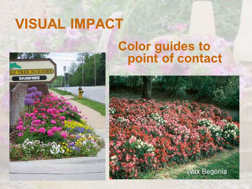 VISUAL IMPACT Color guides to point of contact