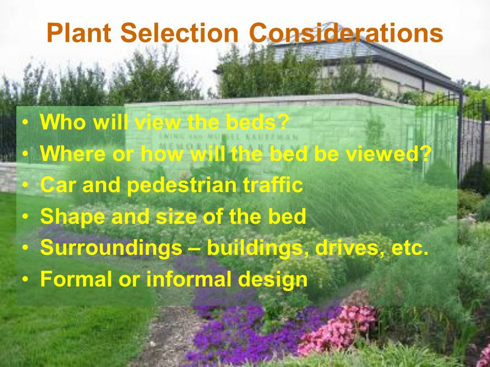 Plant Selection Considerations Who will view the beds? Where or how will the bed be viewed? Car and pedestrian traffic Shape and size of the bed Surro