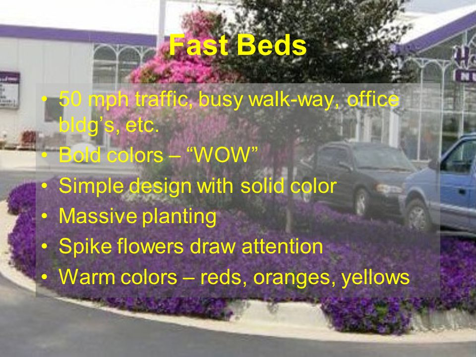 Fast Beds 50 mph traffic, busy walk-way, office bldgs, etc. Bold colors – WOW Simple design with solid color Massive planting Spike flowers draw atten
