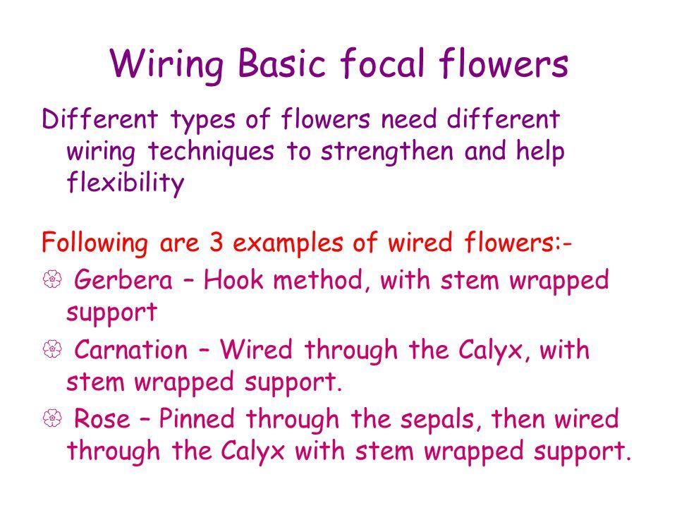 Wiring Focal Flower 1 Gerbera You will need:- 1.A Gerbera 2.14.90mm gauge green wire 3.A length of Stem-tex Gerberas have a hollow stem.
