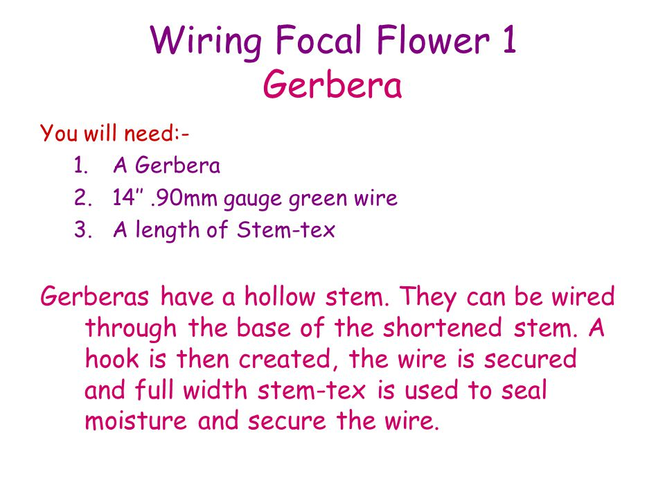 Wiring Focal Flower 1 Gerbera You will need:- 1.A Gerbera 2.14.90mm gauge green wire 3.A length of Stem-tex Gerberas have a hollow stem. They can be w